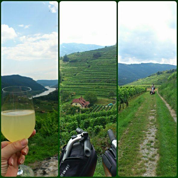 Mit dem Segway durch die Weinberge der Wachau