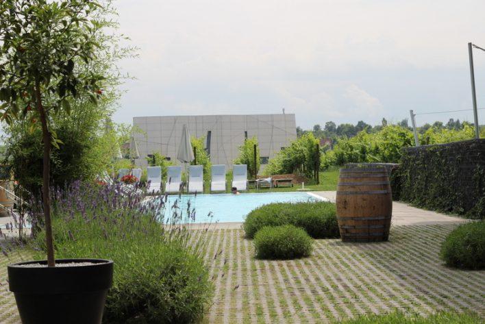 Relaxen in den Weinbergen - oder - Ein Tag im Loisium in Langenlois