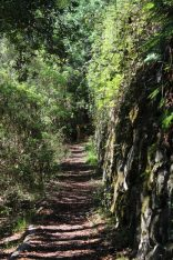 Outdoorschuhe von Panama Jack im Test auf La Gomera