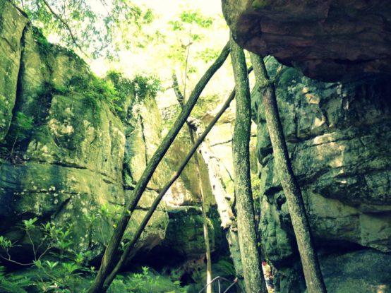 Von farbigen Wasserfällen und genialen Ausblicken am Lookout Mountain in Chattanooga, Tennessee