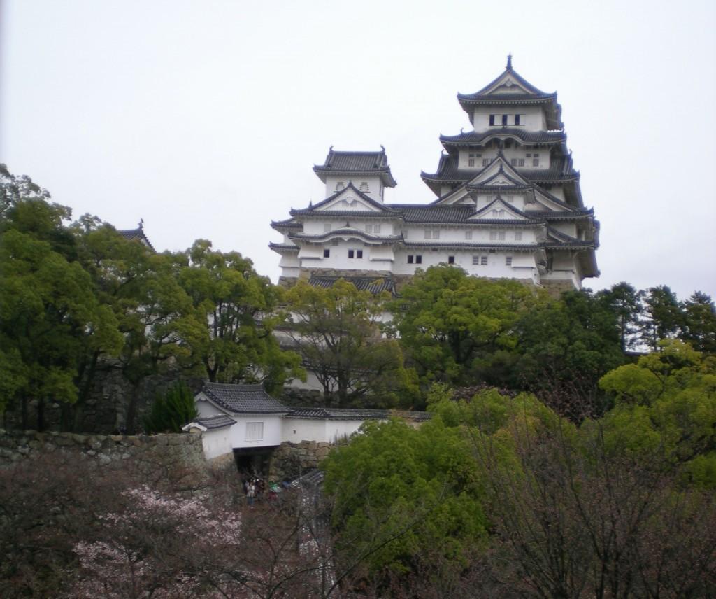 Beginnende Kirschblüte an Himeji-jô