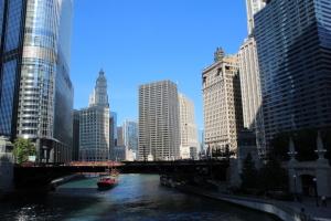 Eine Reise nach Chicago – Erlebnisse einer Kleinstadtpflanze – Teil 1