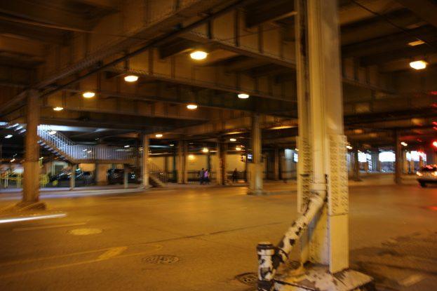 Eine Reise nach Chicago - Erlebnisse einer Kleinstadtpflanze