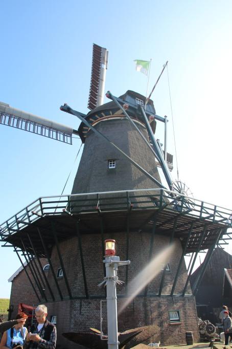 Die Windmühle von Zaandam