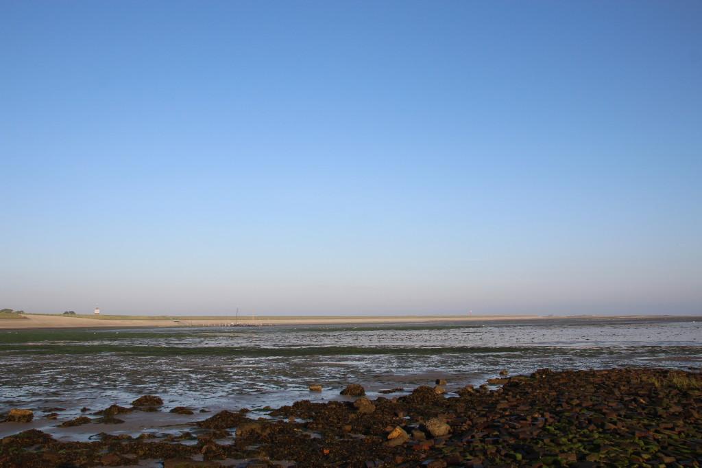 Texel Austern Fischen