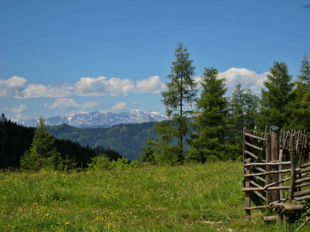 Was man sich in der Steiermark nicht entgehen lassen sollte