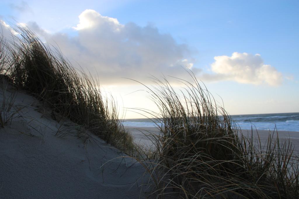 Sylt - Die Insel der Fünf Sinne