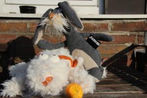 Ein Hasen-Drama: Zwei Ex-Osterhasen auf der Suche nach einem neuen Zuhause!