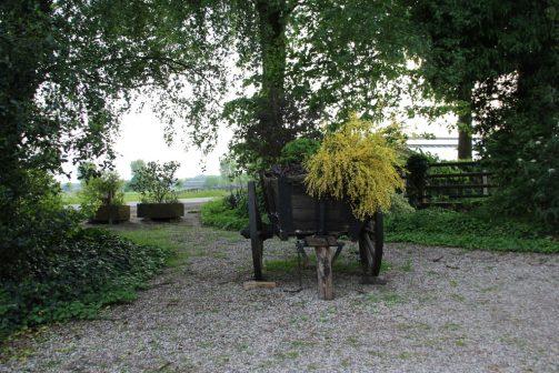 Spargel - Genuss am Niederrhein und wie ich beinahe zum Spargelstecher wurde