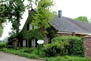 Eine Tea-Time auf dem Neuhollandshof am Niederrhein