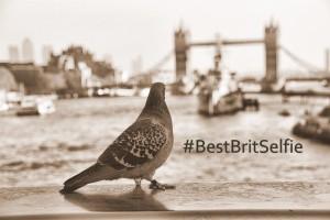 """Twittere dich mit nem """"British Selfie"""" nach London !"""