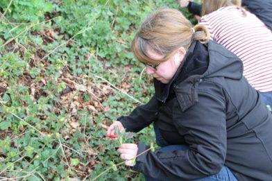 Kreatives Luxemburg - Meine Erfahrungsreise durch die Ardennen