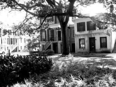 So schön ist Savannah