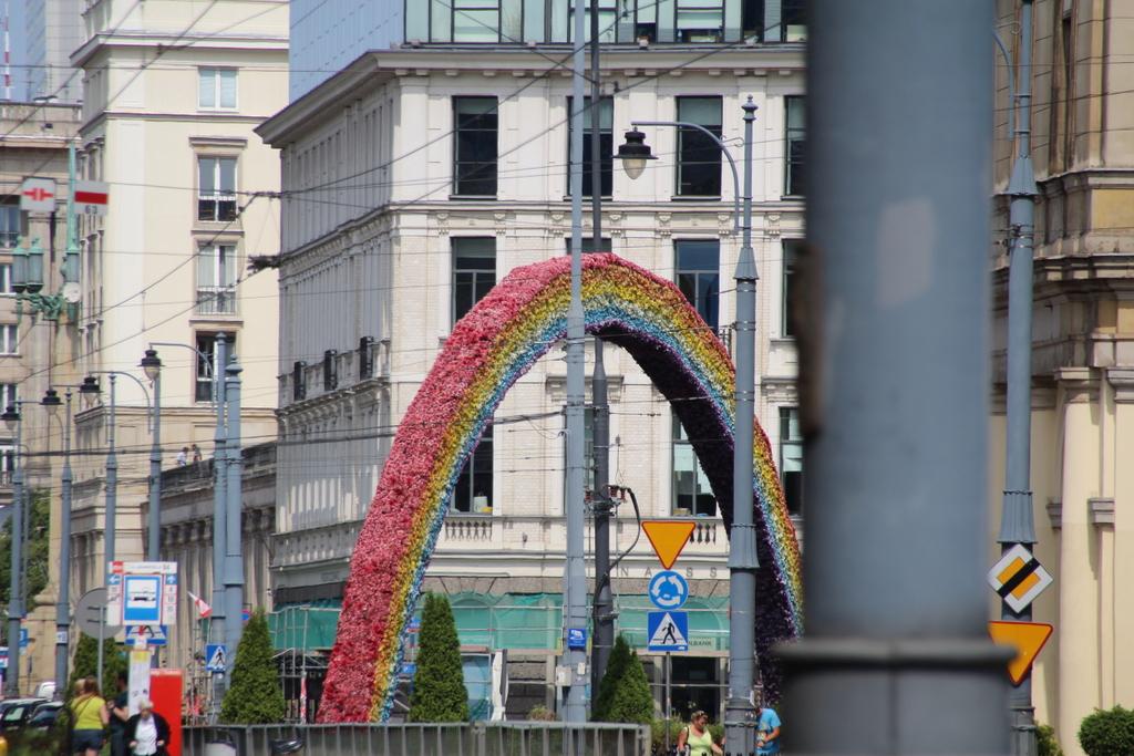 Ein Regenbogen aus Blumen