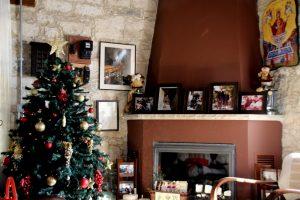 Ein Weihnachtsbaum auf Reise – Ein Erfahrungsbericht