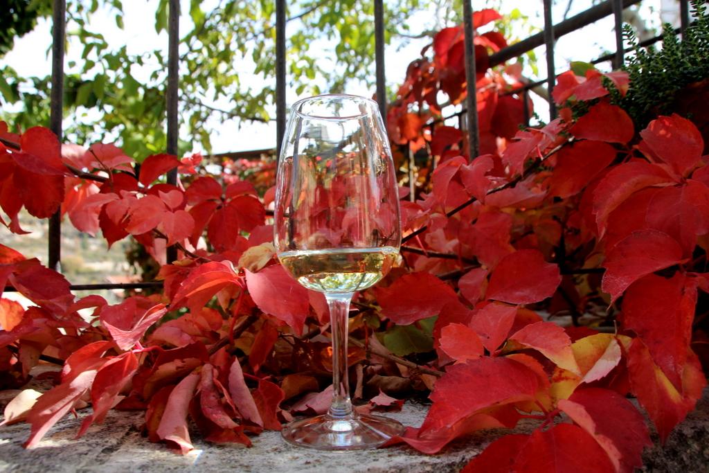 Wein auf Zypern