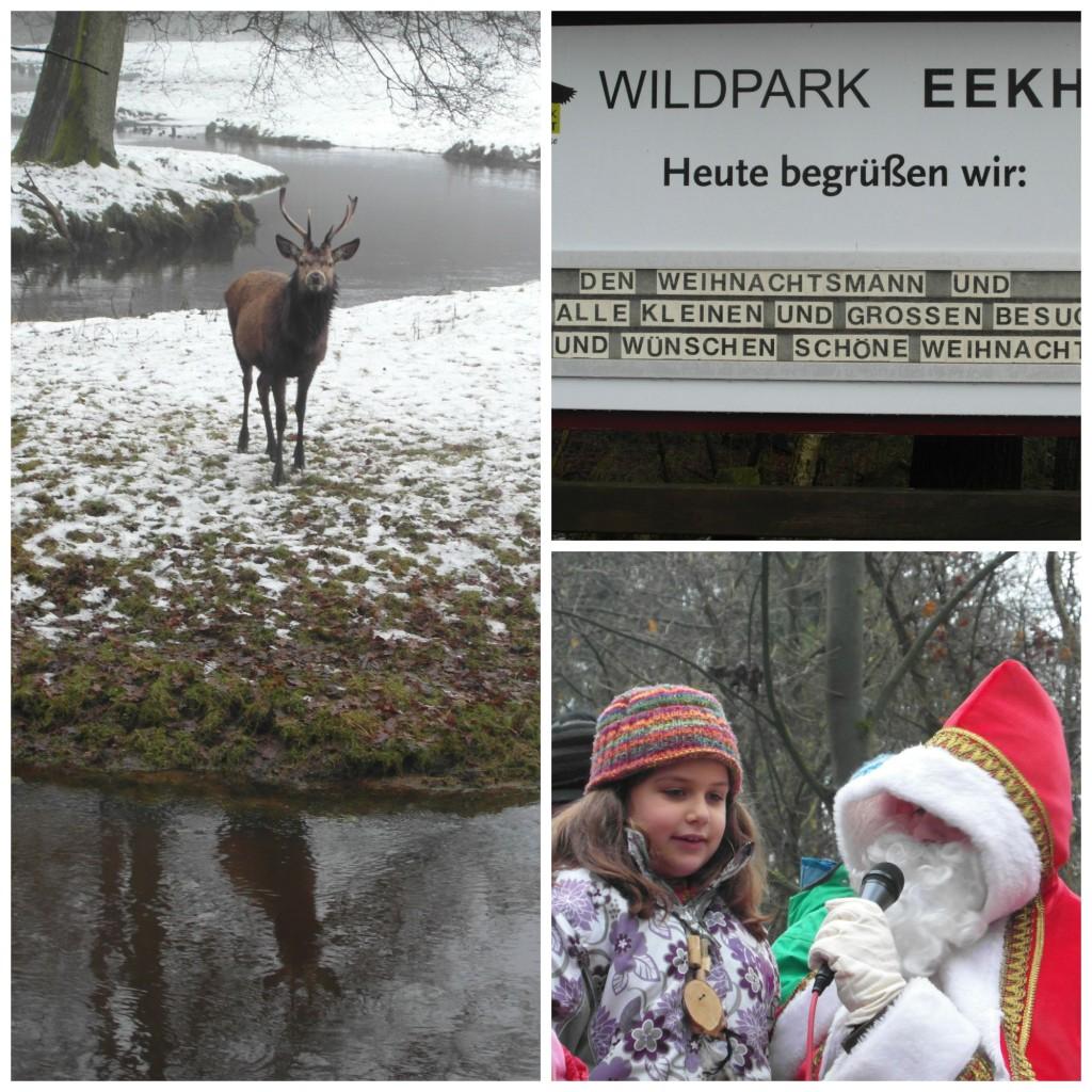 Weihnachten im Tierpark