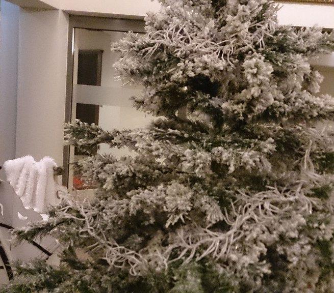 Weihnachtsbaum Engelshaar.Ein Weihnachtsbaum Auf Reise Ein Erfahrungsbericht