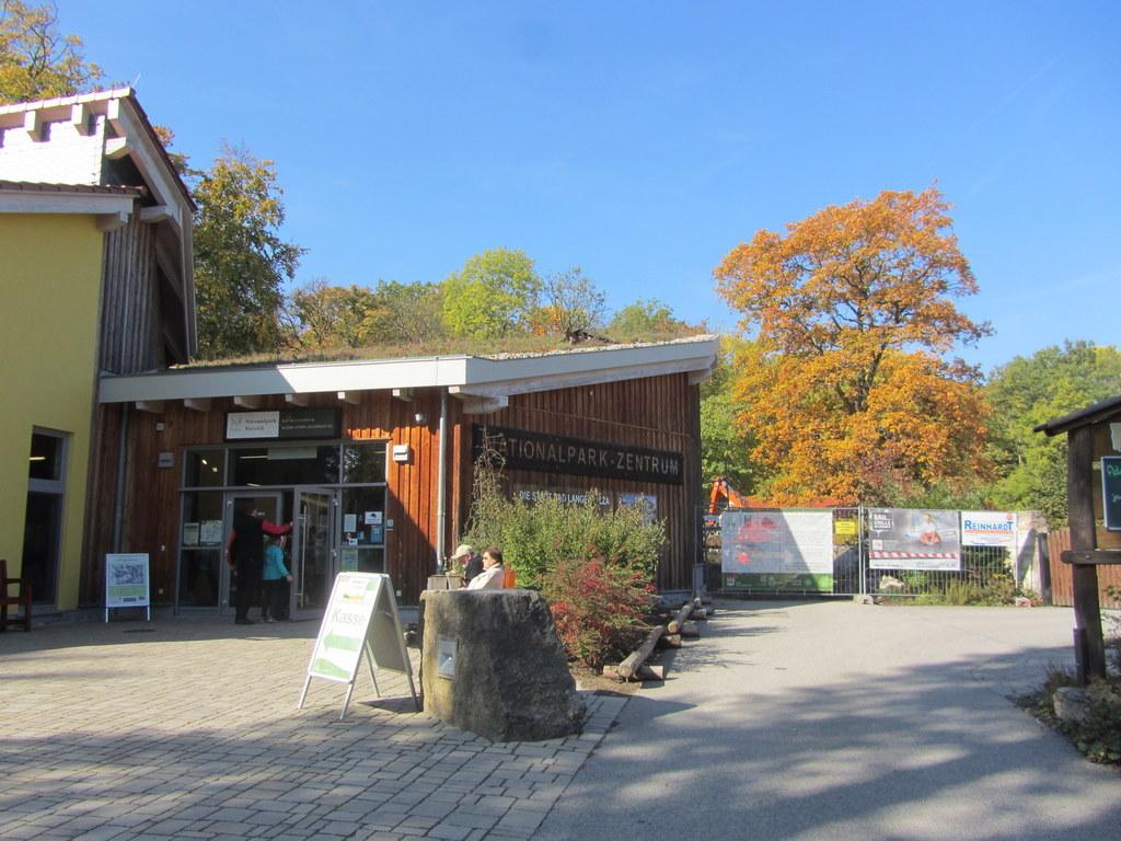 Baumkronenpfad Hainich im Oktober (2)