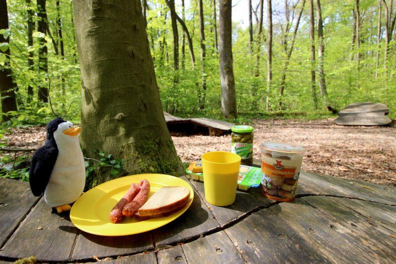 So schön ist der Baumkronenpfad im Nationalpark Hainich
