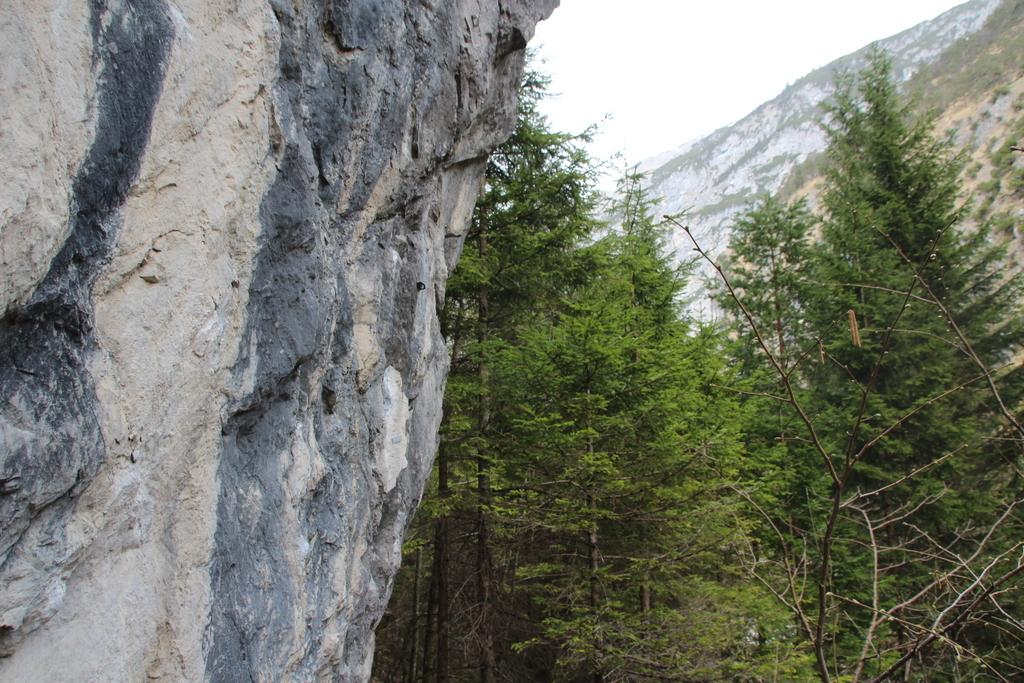 Halltal Wanderung (30)