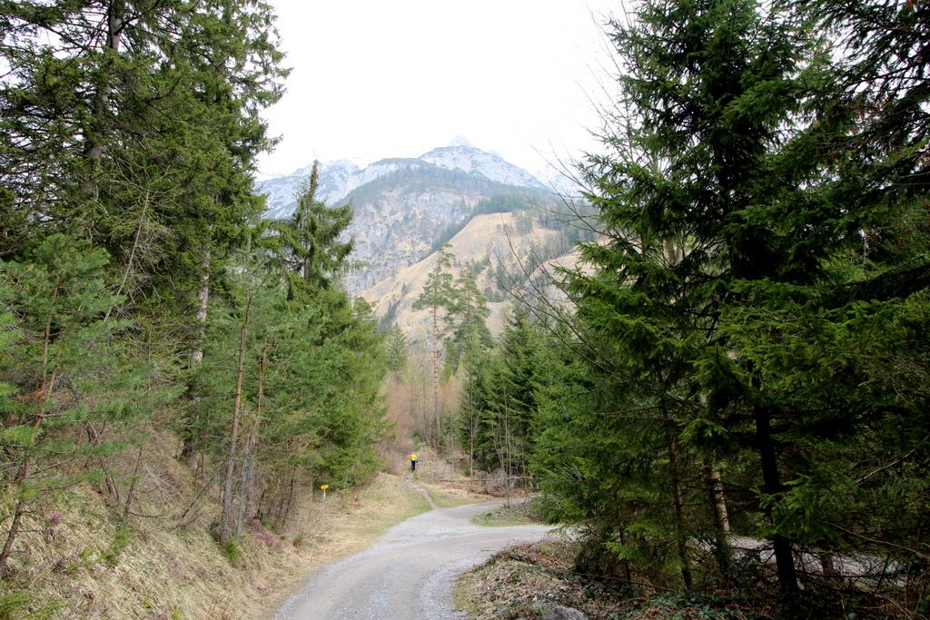 Halltal Wanderung (9)