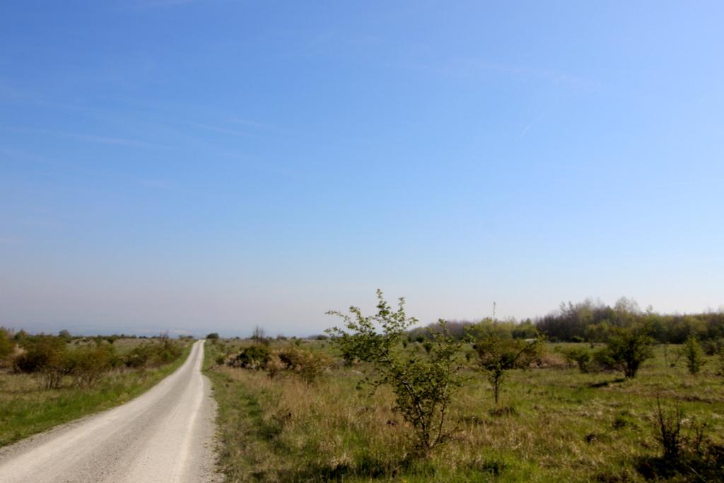 Nationalpark Hainich (19)