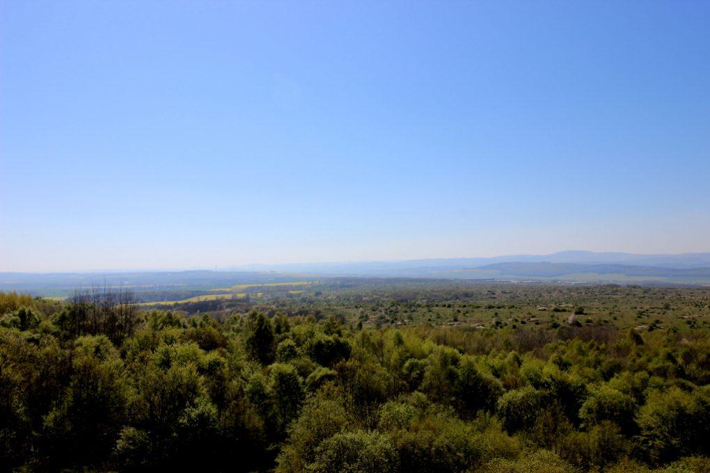 Aussicht Aussichtsplattform Hainich-Blick