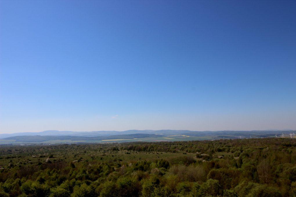 Weit hinaus kann man schauen von der Aussichtsplattform Hainich-Blick