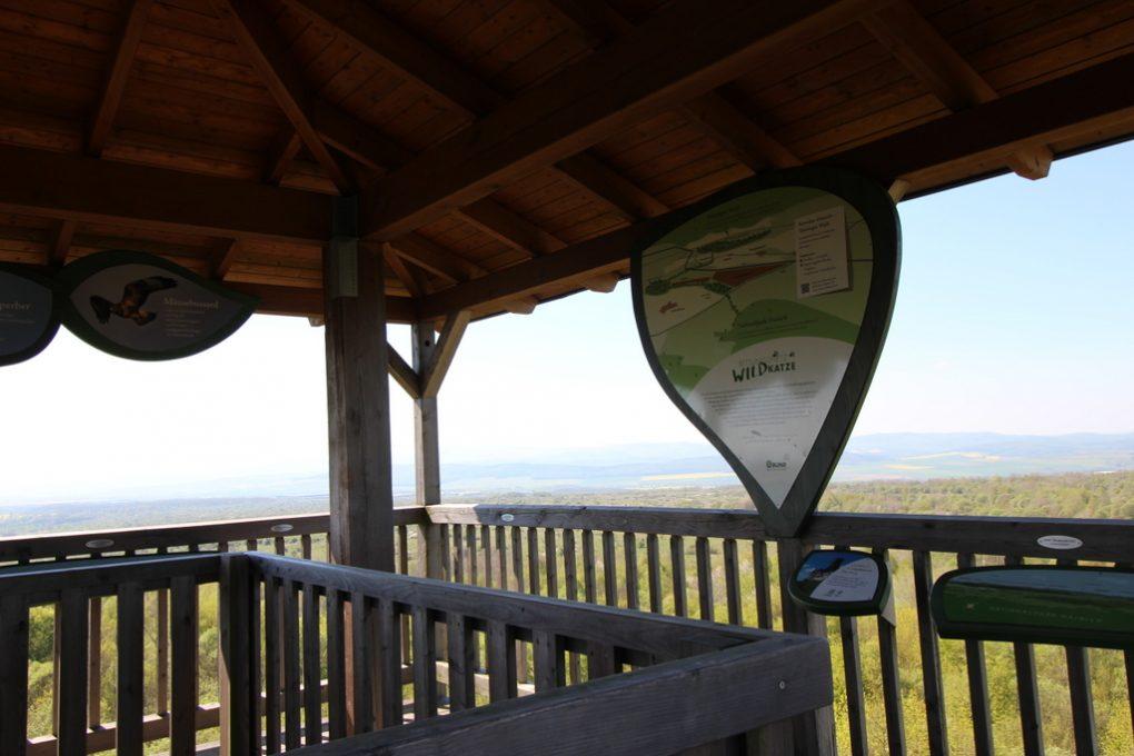 Blick auf der Aussichtsplattform Hainich-Blick