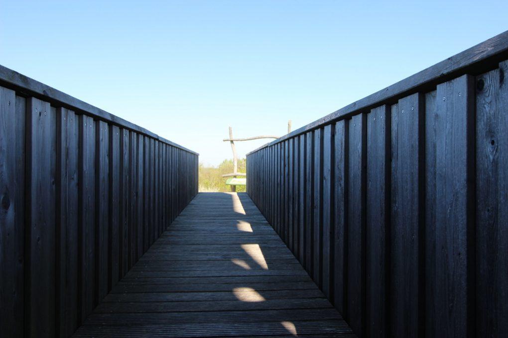 Stiege zum Aussichtsplattform Hainich-Blick