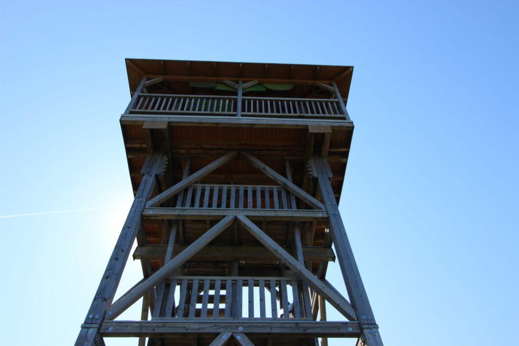 Von unten – Aussichtsplattform Hainich-Blick