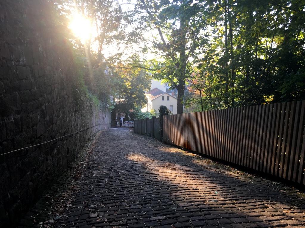 heidelberg-sonnenuntergaenge-4