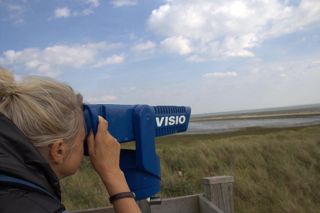 Ein Blick durch das Fernglas zeigt mir die Seehunde vor Langeoogs Küste