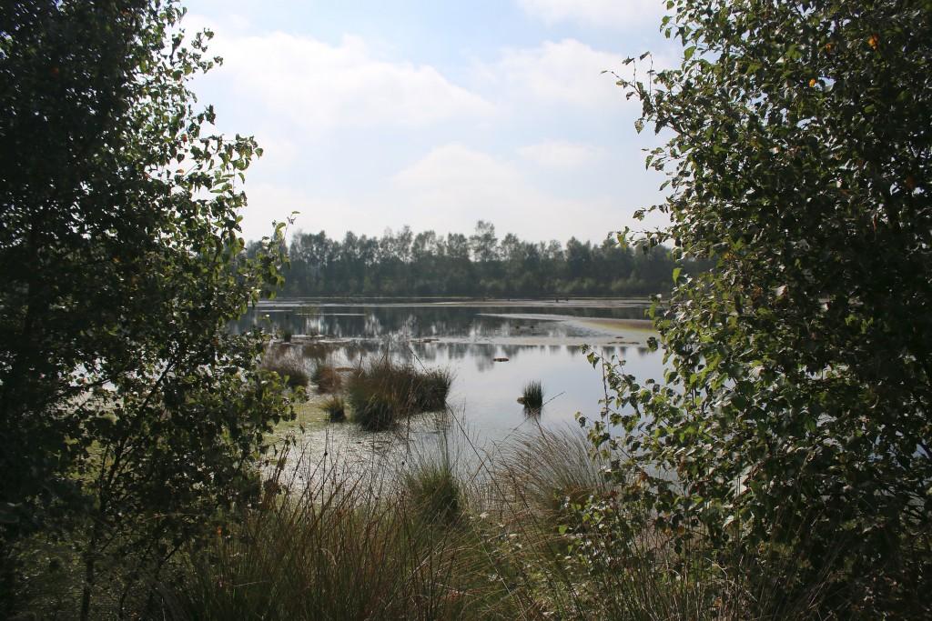 05-landschaft-am-radweg