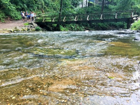 Abenteuer in Manderscheid und warum ich nie wieder ohne Wanderschuhe wandere.