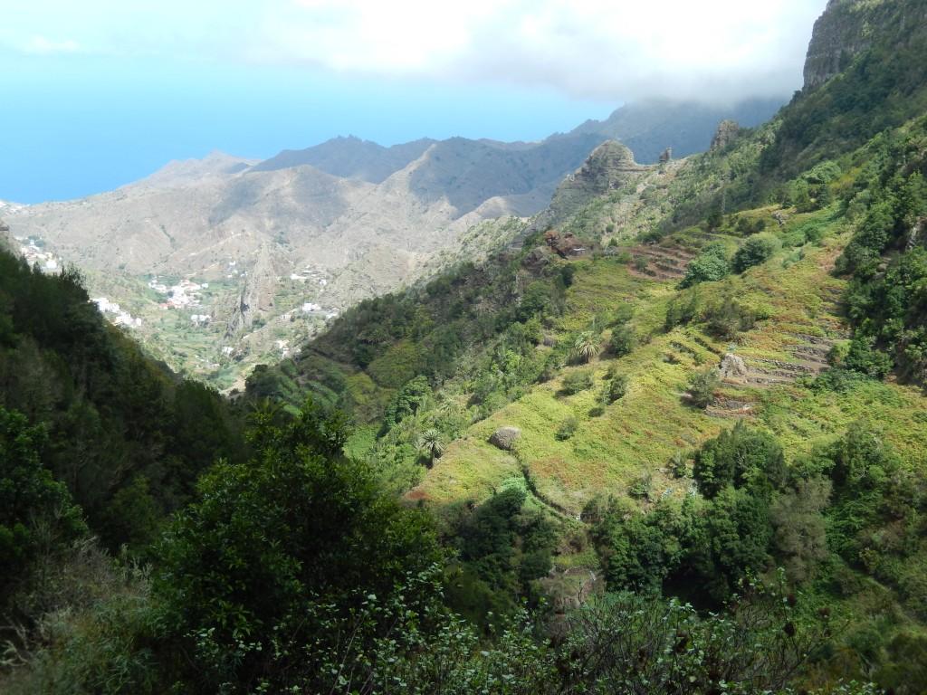 La Gomera -  San Sebastian, 1000 Palmen und ein Zauberwald