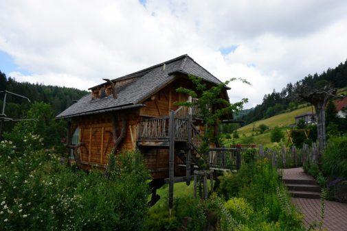 Köstlicher Schwarzwald – dem Wildkräutergenuss auf der Spur in Baiersbronn