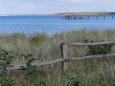 Flitterwochen an der Ostsee: Romantischer Strandspaziergang und Meer
