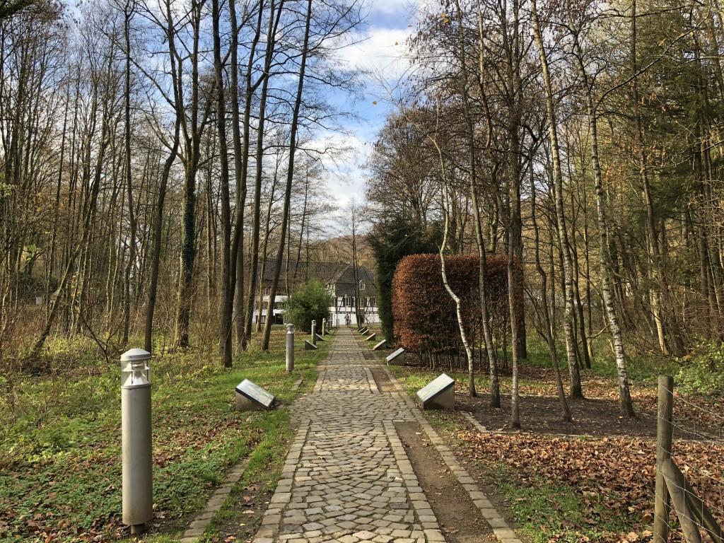 Nachhaltig rund um Köln - Mit Elektroauto von cambio unterwegs