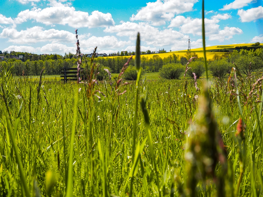 Vogtland Natur entdecken