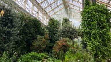 18 Botanische Gärten mit Gewächshäusern in Deutschland