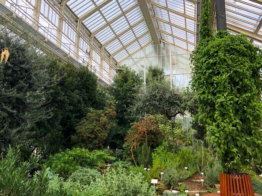 Botanische Garten Mit Gewachshausern In Deutschland Eine Ubersicht