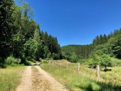 Wandern in Ostbelgien - Touren an Our und im Hohen Venn
