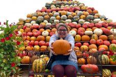 Herbstausflüge in Nordrhein-Westfalen