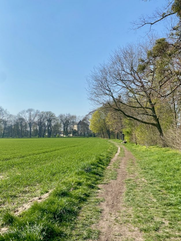 Die schönsten Parks, Wälder und Naturschutzgebiete in und um Düsseldorf
