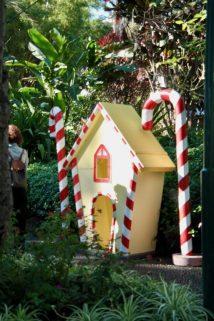 Weihnachten auf Madeira - von wirklich bunten Feiertagen!