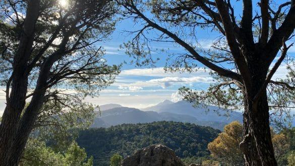 Winterurlaub in der Sonne: Entspannte Wandertage auf Mallorca