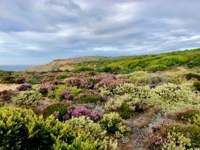 Odemira - der wilde Atlantik und wir