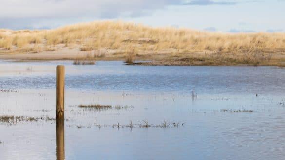 Spiekeroog - Tipps für eine Inselauszeit